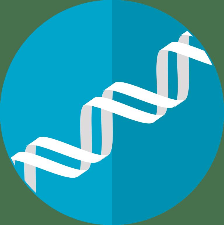 dna icon, gene, helix