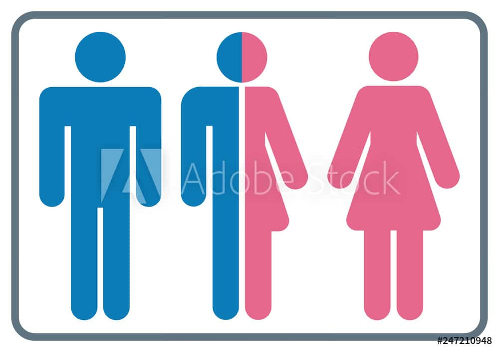 gz316 GrafikZeichnung - nmss41 NewModernSanitarySign nmss - english - lesbian, gay, bisexual and transgender sign (LGBT) - simple template / close-up - blue / pink - DIN A3, A4 xxl - g7165