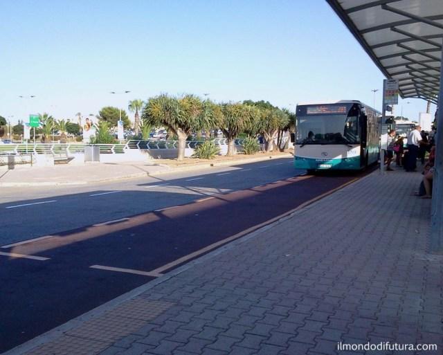 autobus aereoporto malta