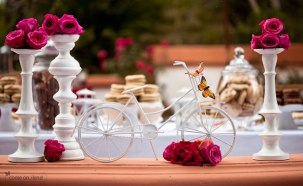 wedding_bicycle2