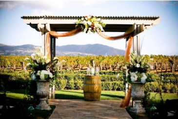vineyard-wedding-wine-wedding-ceremony