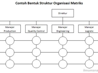 contoh bentuk Struktur Organisasi Matriks