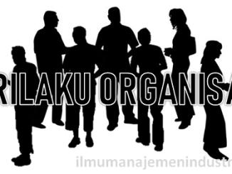 Pengertian Perilaku Organisasi dan Ruang Lingkup Perilaku Organisasi