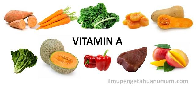 10 Makanan yang mengandung Vitamin A Tertinggi