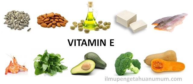 10 makanan yang mengandung vitamin E tertinggi
