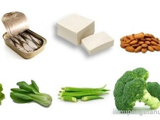 10 Makanan yang mengandung Kalsium Tertinggi