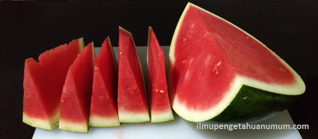 Kandungan Gizi Buah Semangka dan Manfaat Buah Semangka bagi Kesehatan