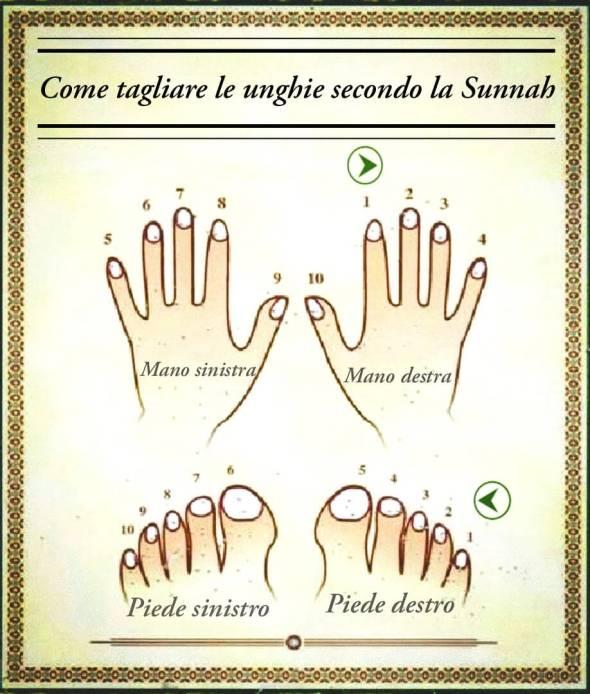 come tagliare unghie islam, sequenza taglio unghie islam, sequenza taglio unghie sunnah
