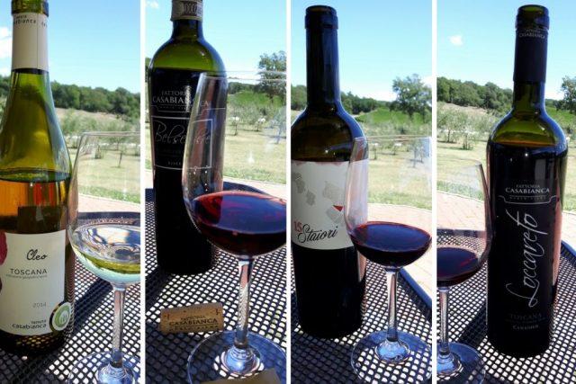 I vini di Tenuta Casabianca