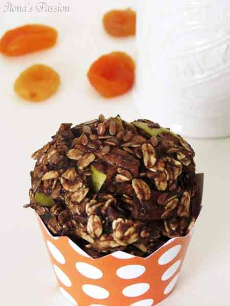 """""""8 Healthy Desserts"""" - Healthy Cocoa Honey Oat Muffins by ilonaspassion.com"""