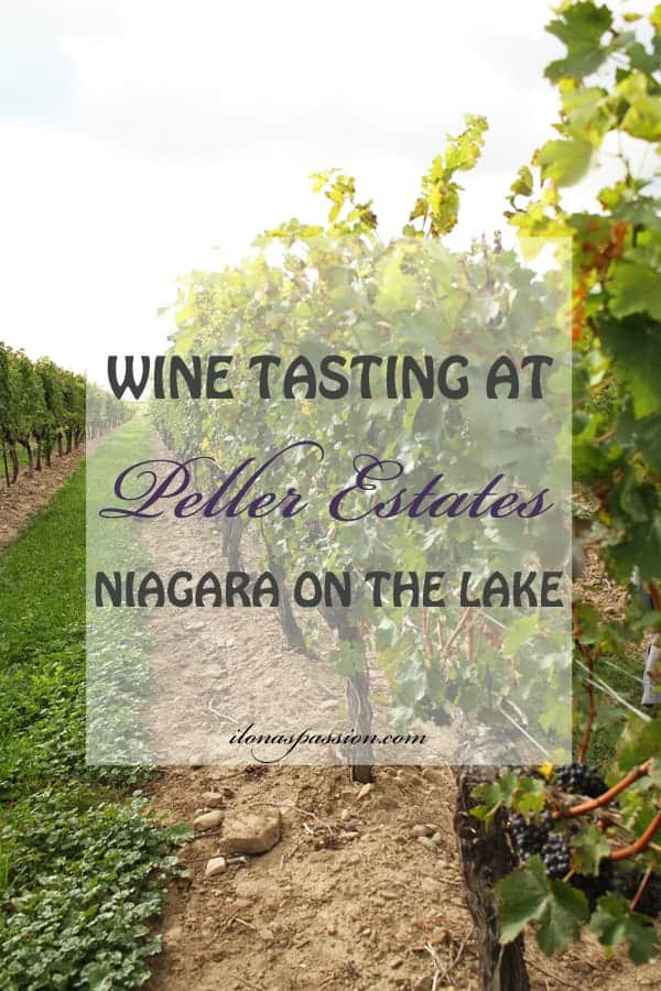 Enjoy a wine tasting at Peller Estates in beautiful Niagara on the Lake. Great Wine! Enjoy the ultimate Icewine Experience in igloo lounge! by ilonaspassion.com I @ilonaspassion