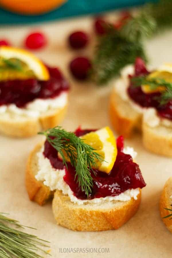 Farmer's Cheese and Cranberry Appetizer