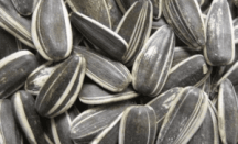 sunflower seeds great for healthy skin