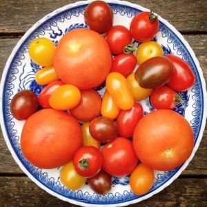 Detoxsalade tomatensalade met kappertjes en rode ui. Detox recept van detoxcoach van I Love Detox.