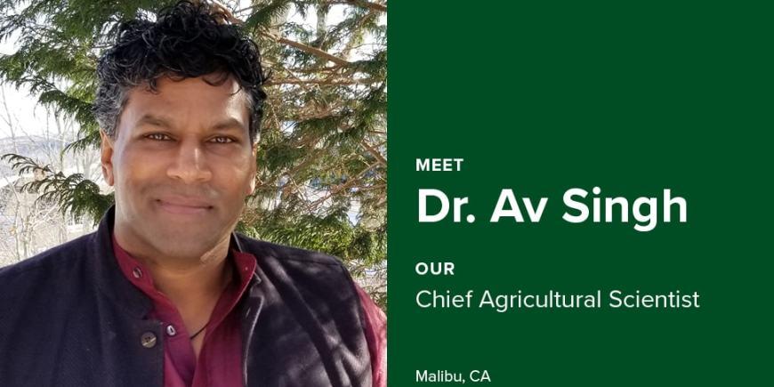 Meet Dr. AV Singh