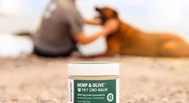 Green Gorilla Botanical CBD Balm for Pets Now Available