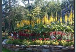 Alaskan Frontier Gardens
