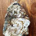 Ciondolo Rosa di Calcedonio