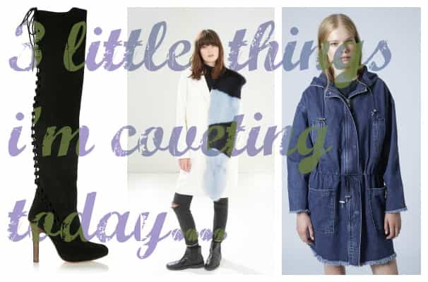 3 little things, coveting, today