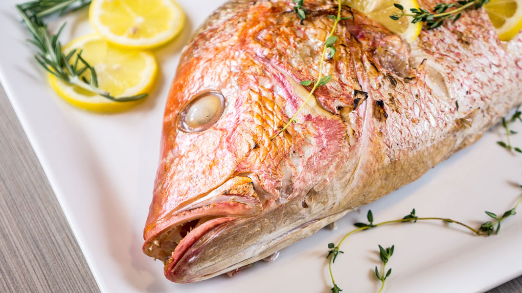 recipe: how to grill red snapper fillets on gas grill [17]