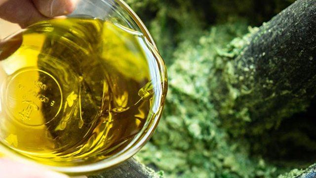Adding Olive Oil to ramp pesto