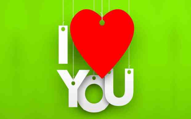 I love you Pictures with Green Background