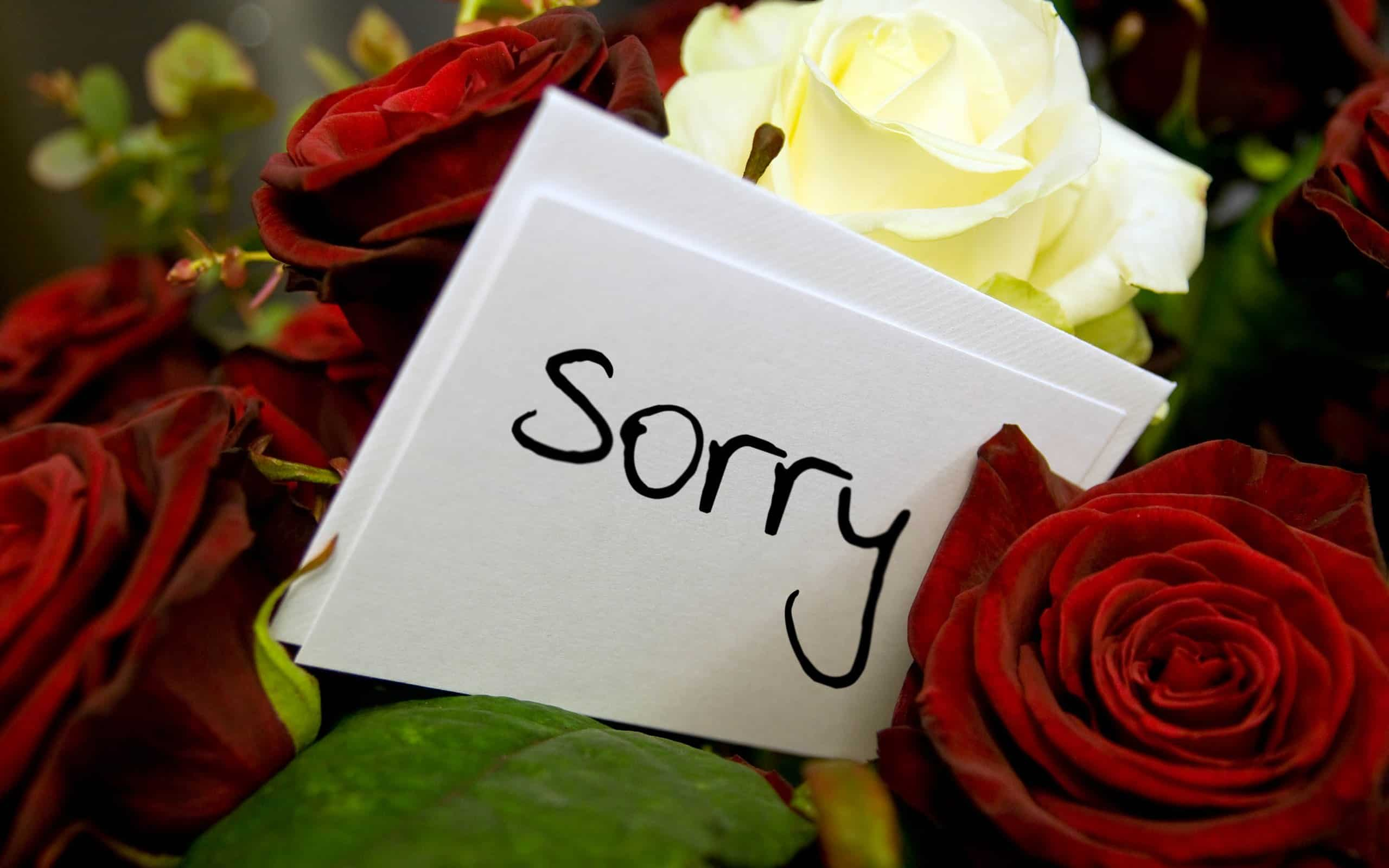 Cute Apology Messages To A Lover With Sorry Images  Apology Card Messages