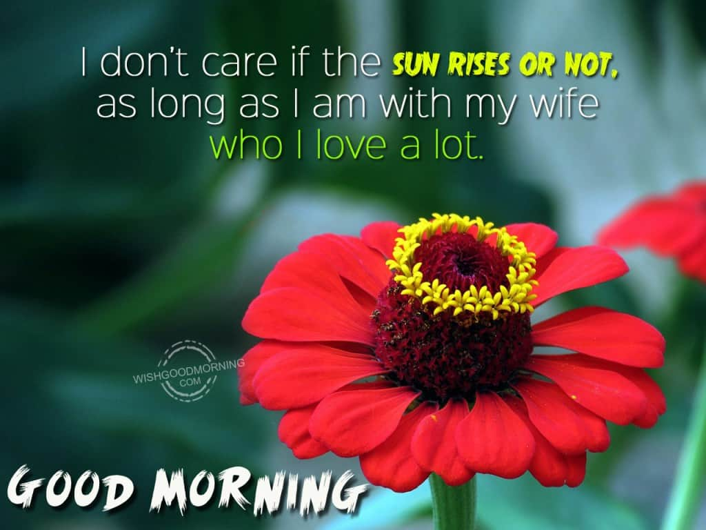 sweet love messages for my wife with images