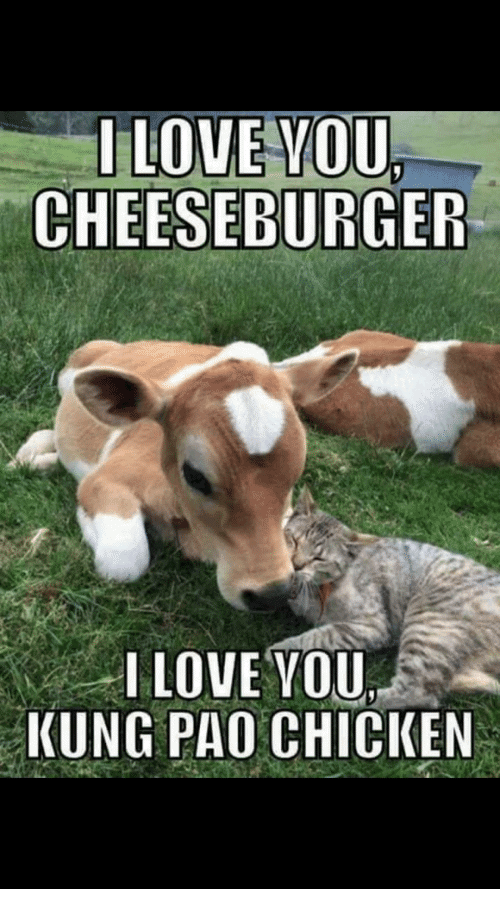 75 Funny I Love You Memes for Him and Her - iLove Messages