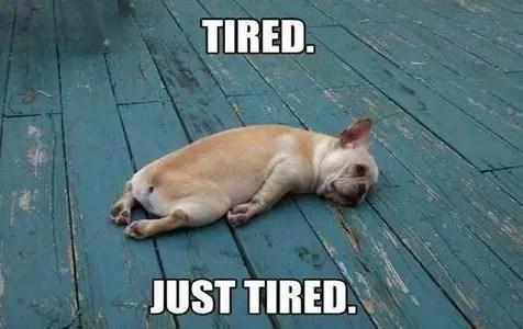 so tired funny good night meme?ssl=1 so tired funny good night meme ilove messages