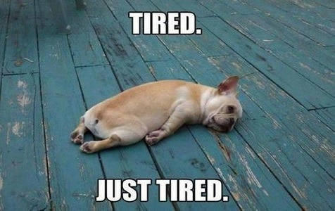 Funny Friday Night Meme : So tired funny good night meme ilove messages