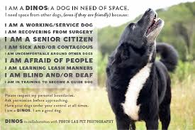 Respecting a Dog's Space – Continued