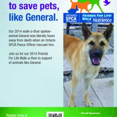 Ontario SPCA Friends for Life! Walk™