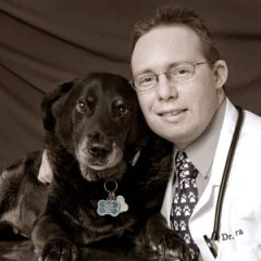 Introducing – Vet Chat with Dr. Llera