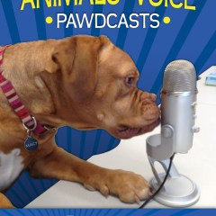 Ontario SPCA Pawdcast – Partnership with Royal Canin Canada