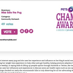 The Farley Foundation – Pets Plus Champion Awards