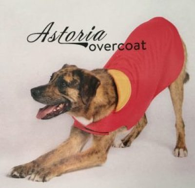 Gold Paw Series - Astoria Overcoat #sp