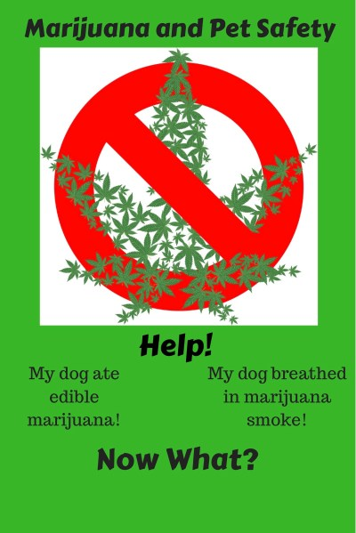 Marijuana and Pet Safety