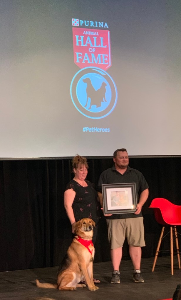 Purina Canada Animal Hall of Fame 2019