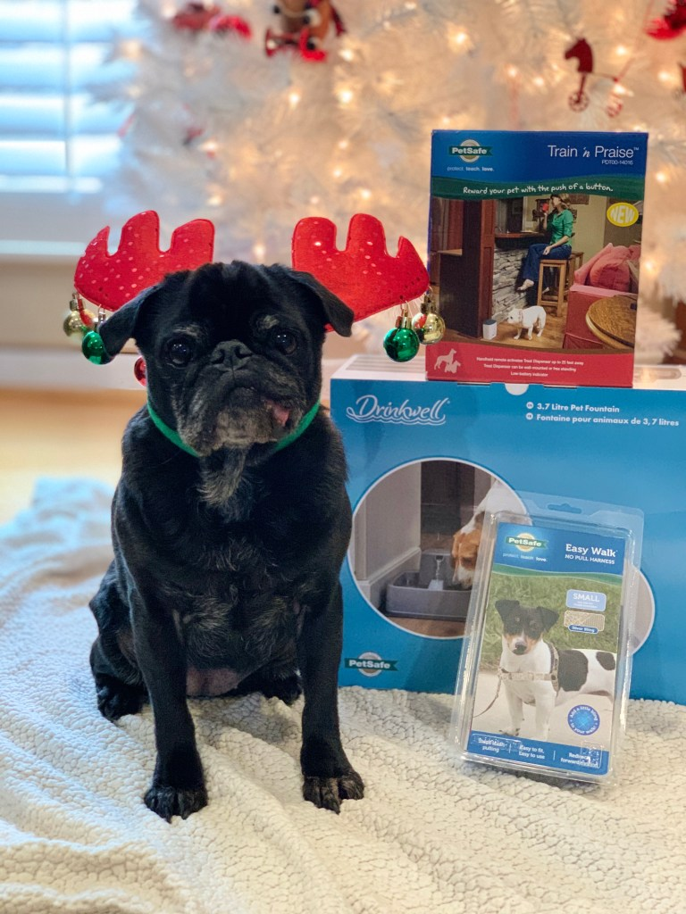 PetSafe Canada's Howliday Dog Prize Bundle Giveawway #ad