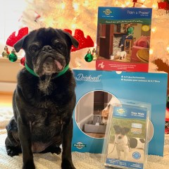 PetSafe Canada's Howliday Dog Prize Bundle Giveaway!