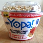 What is Greek yogurt? Greek Yogurt vs Regular Yogurt: Which Is More Healthy option? Yopa! Review
