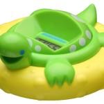 little turtle!