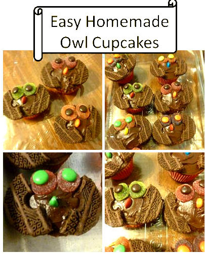 Cute and Easy Homemade Owl Cupcakes I love My Kids Blog