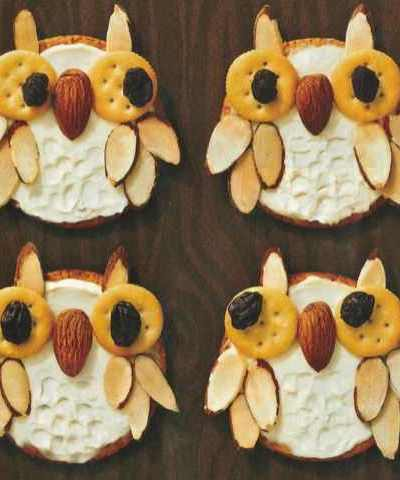 Healthy, Fun and Cute Snack idea – Whooo's hungry owl crackers