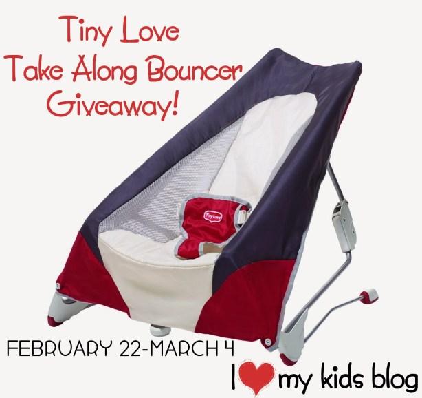take along bouncer