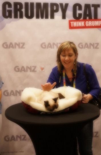 the grumpy cat and me