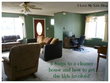 cleaner house small