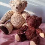 Bears for Humanity – Certified Organic Teddy Bear that gives back