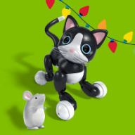 exclusive zoomer kitty